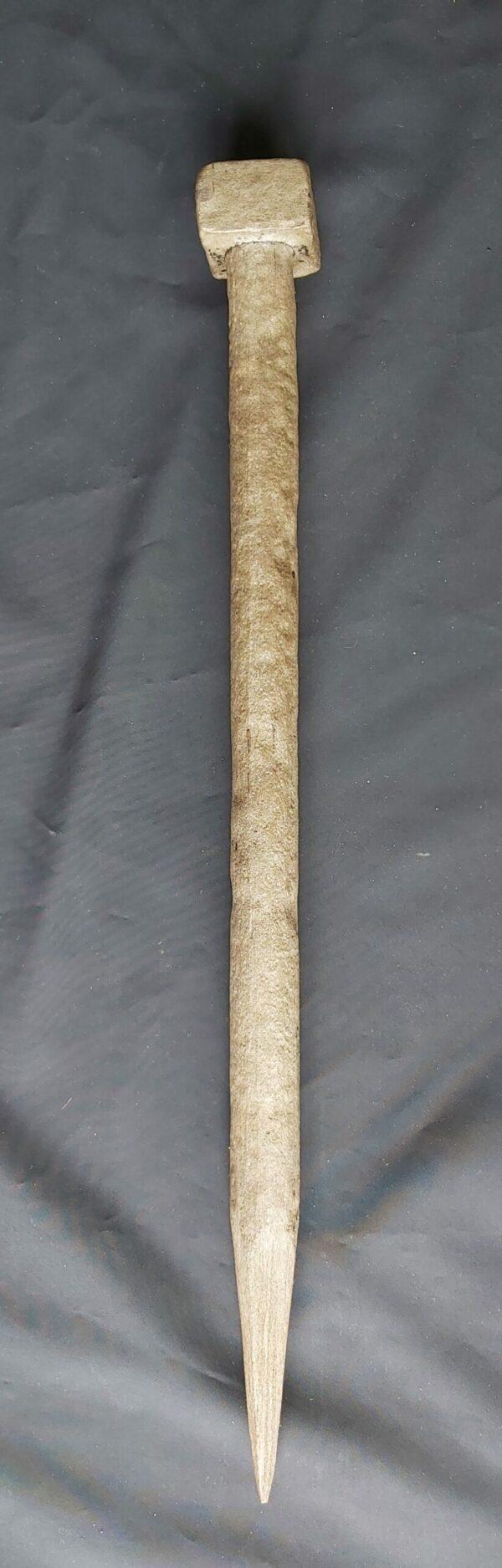 Paku Bumi - ZK-467-HMZ